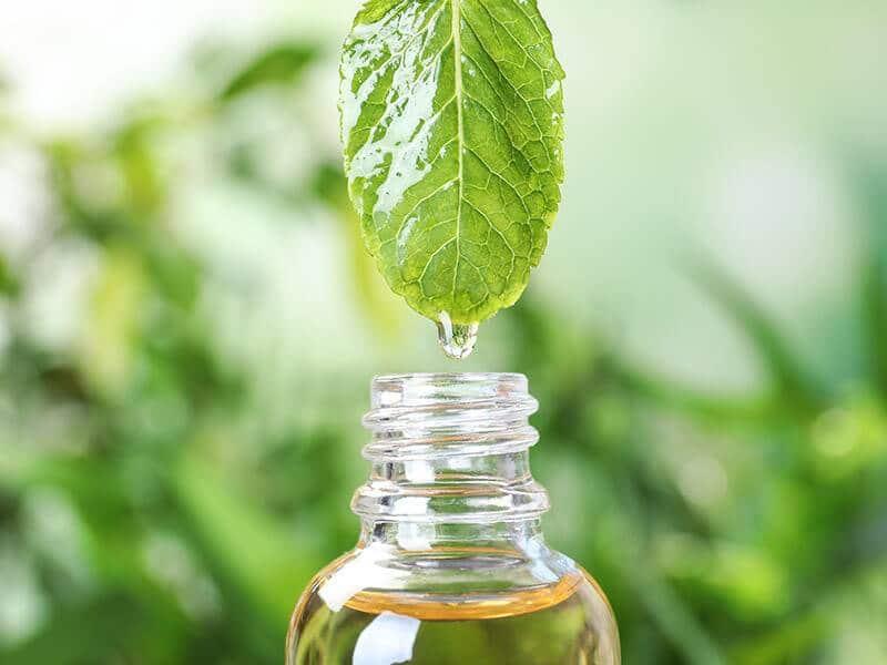 L'aromathérapie est une science naturelle qui traite de manière holistique les troubles et maladies avec les huiles essentielles.
